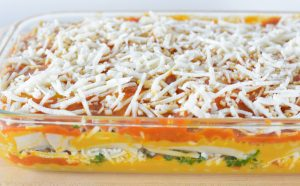 Dairy Free Lasagna Recipes