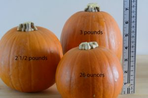 How to choose the right pumpkin for a pumpkin pie