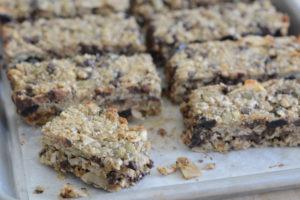 Your Allergy Chefs Allergen Free Trail Mix Bars recipe